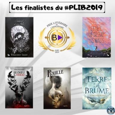 """Résultat de recherche d'images pour """"les finalistes du plib2019"""""""